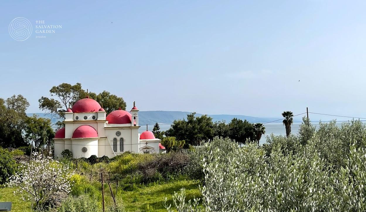Capernuam Holy Land Prayer Request