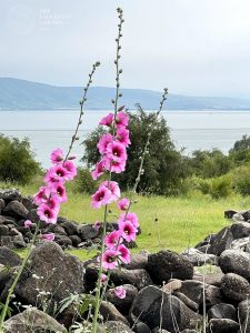Sea of Galilee Prayer Request