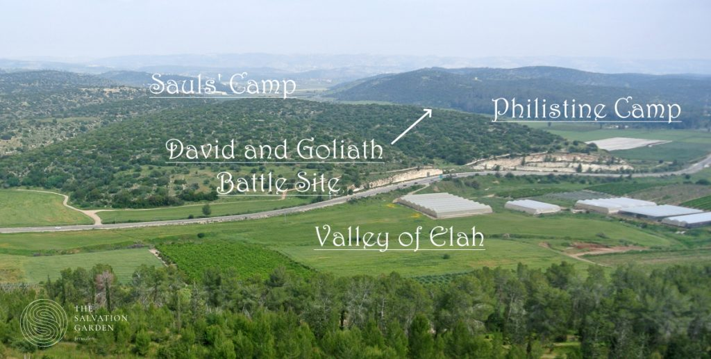 Valley of Elah Prayer Request David and Goliath